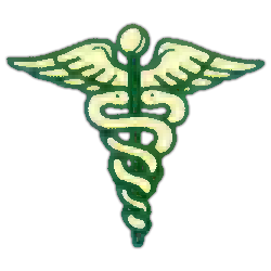Brentwood Health Care Inc. Icon